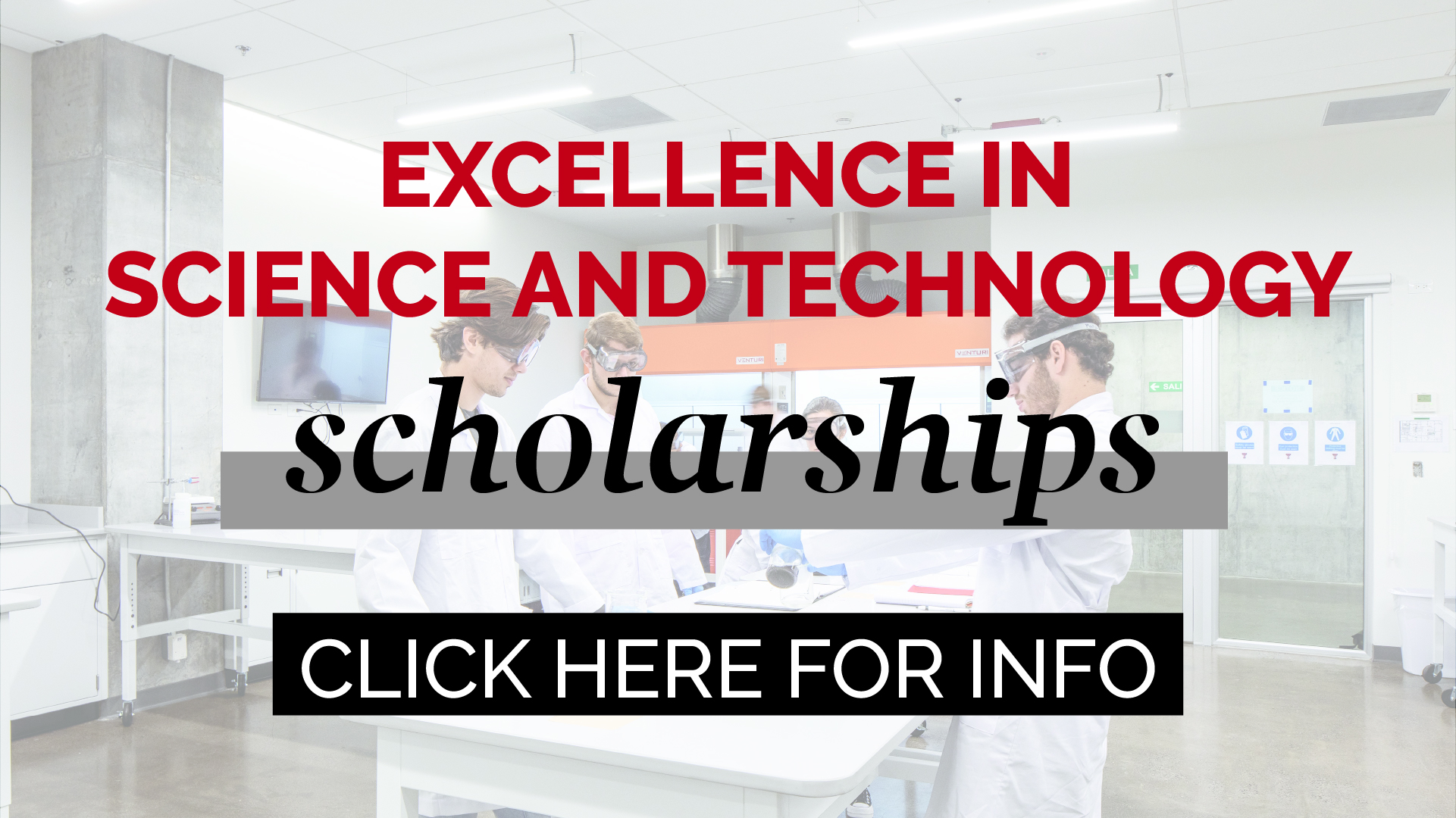 excellence in science and technology scholarships