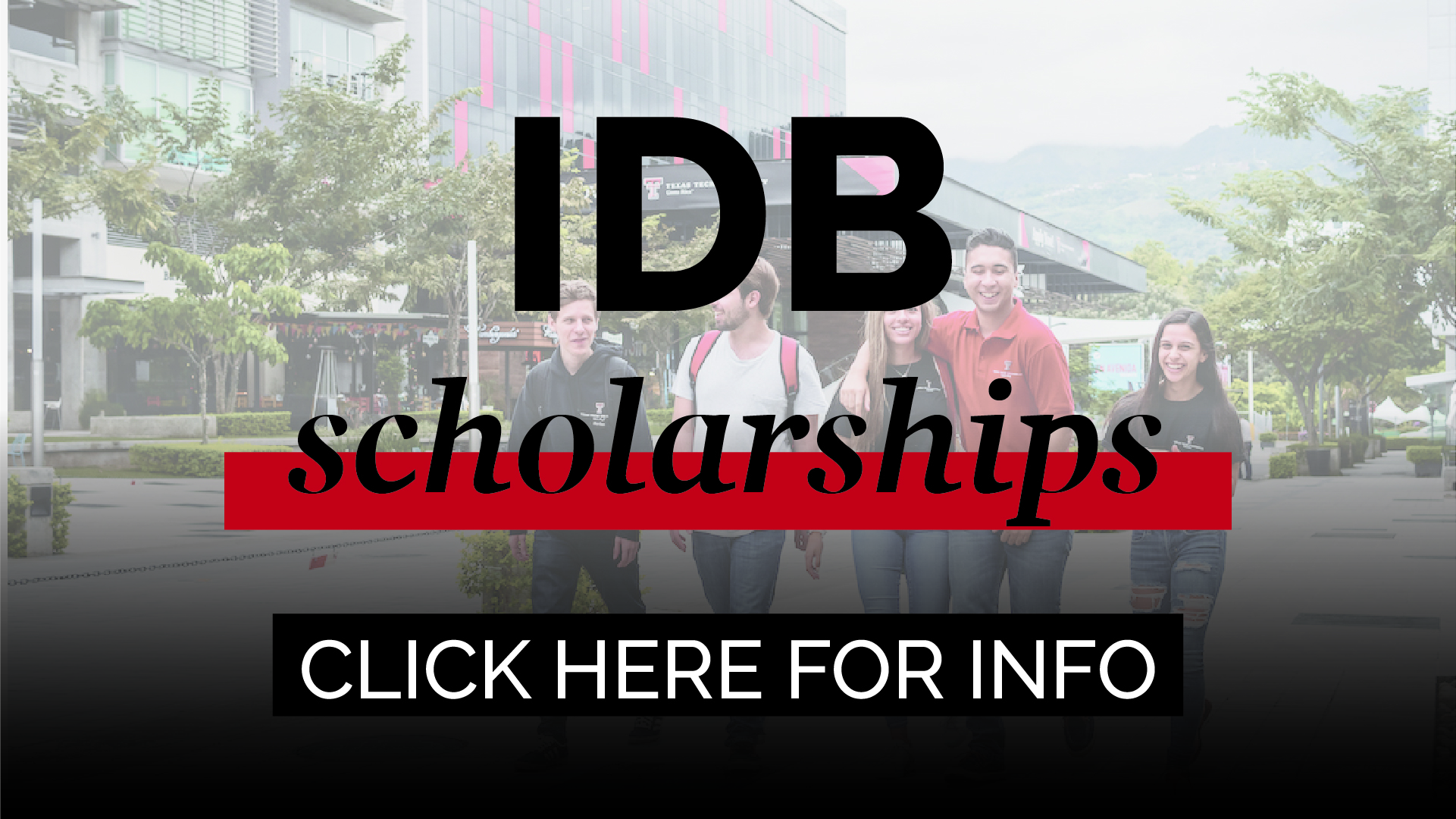 idb scholarships